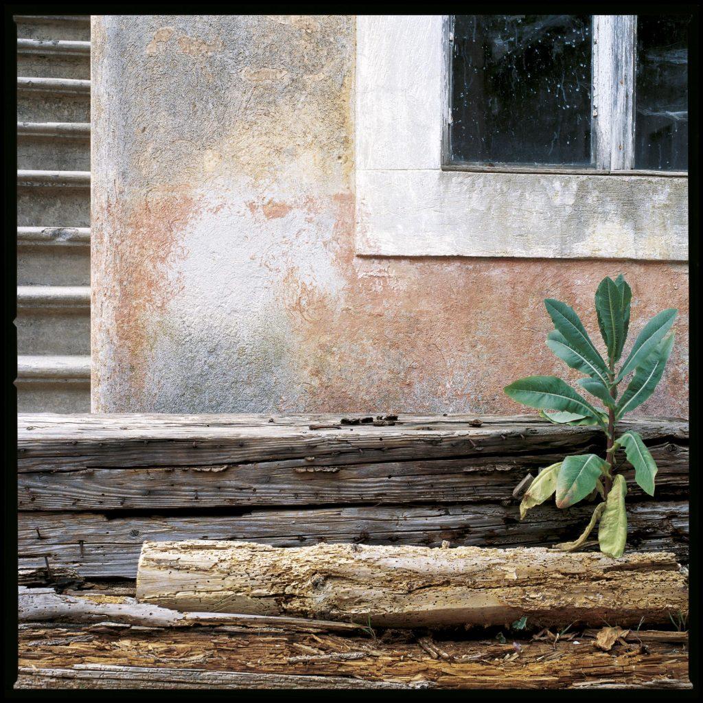 No 11, Zlarin, 2002