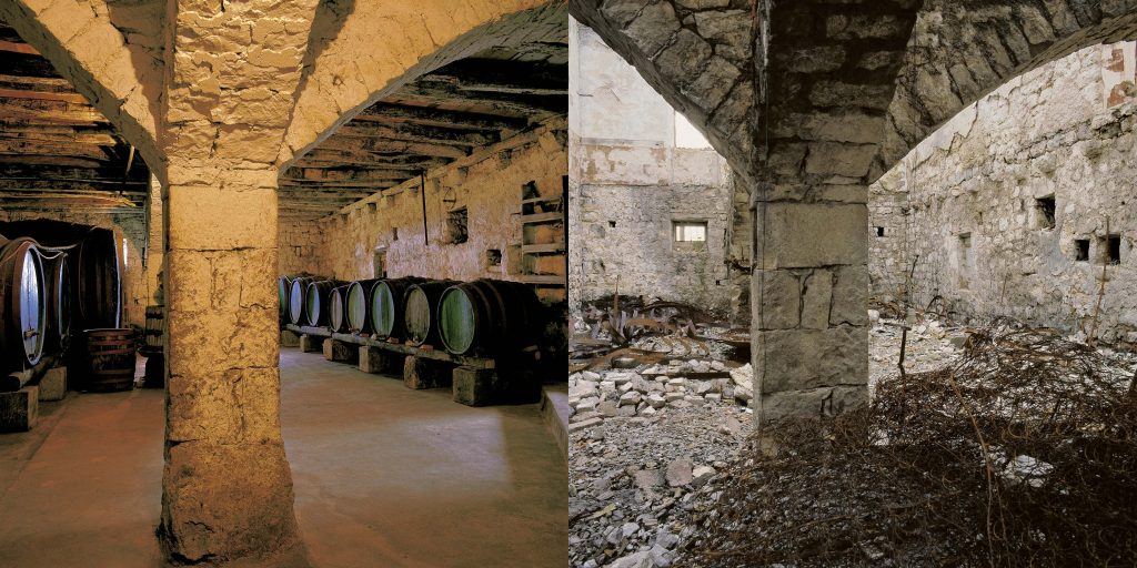 WINE CELLAR, GLAVIĆ HOUSE, Poijice, Konavle, June 1990 / November 1992